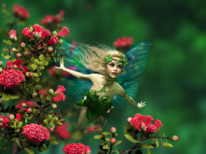 fairy flying through red flowers