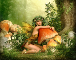 fairy sitting with mushrooms