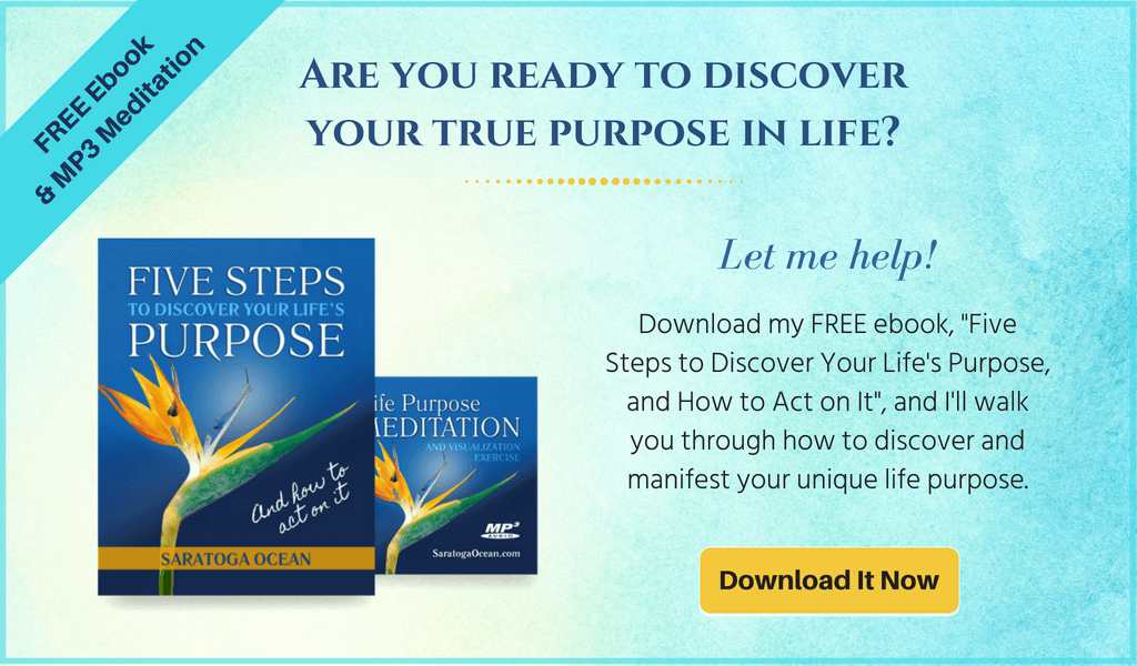 "Download my free e-book ""5 Steps to Discover Your Life's Purpose (And How to Act On It)"""